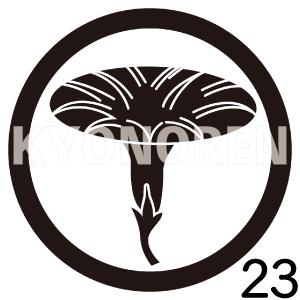 丸に朝顔(まるにあさがお)家紋23のれんkyonoren.com