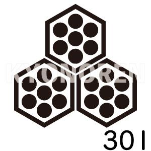 六郷亀甲(ろくごうきっこう)家紋301のれんkyonoren.com